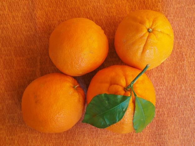 葉とオレンジ色の果実