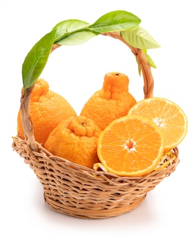 オレンジスライスとオレンジスライスとバスケットの葉、白い背景で隔離の葉とデコポンオレンジまたは相撲みかん。