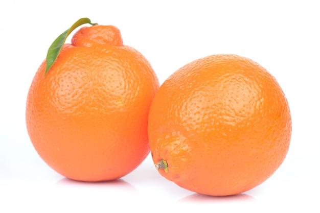 오렌지 과일
