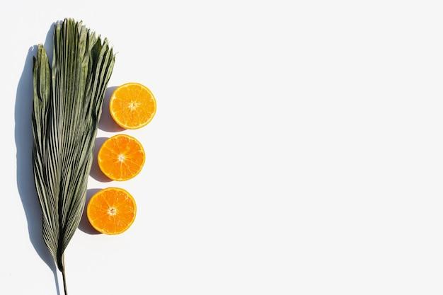 Orange fruits and leaves