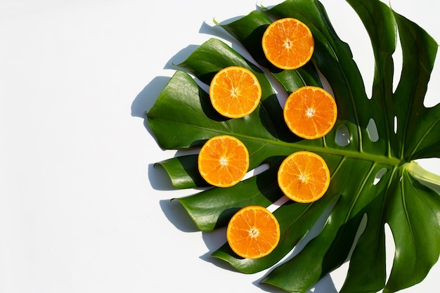 Orange fruits and monstera leaf