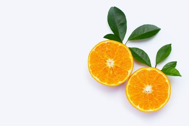 白地にオレンジ色の果実
