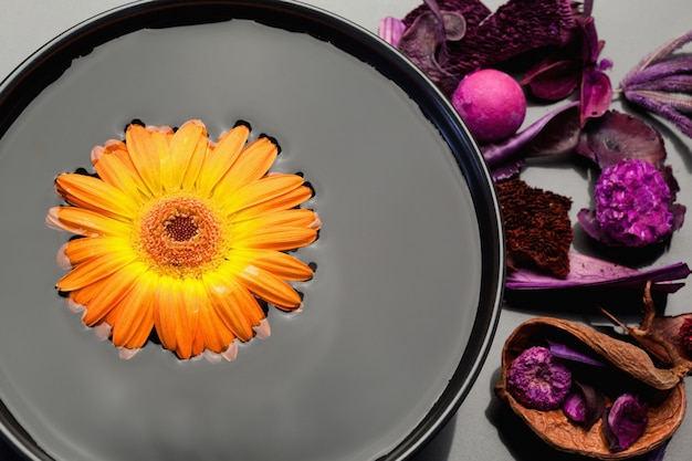 黒い鉢の中に浮かぶオレンジのガーベラと紫の乾燥した花