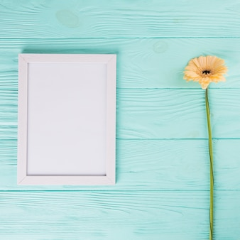 Orange gerbera flower with blank frame on table