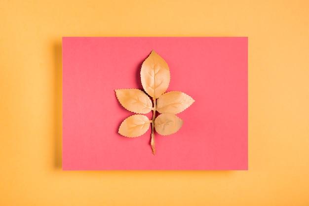 ピンクの長方形にオレンジの葉