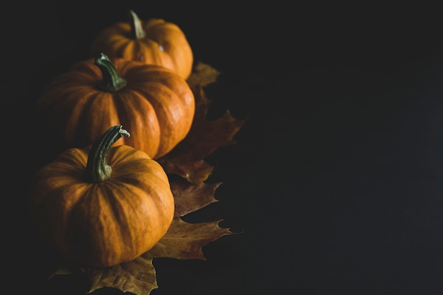 Orange littlep pumpkins on dark wood