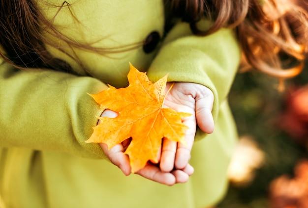 子供の手にオレンジ色のカエデの葉