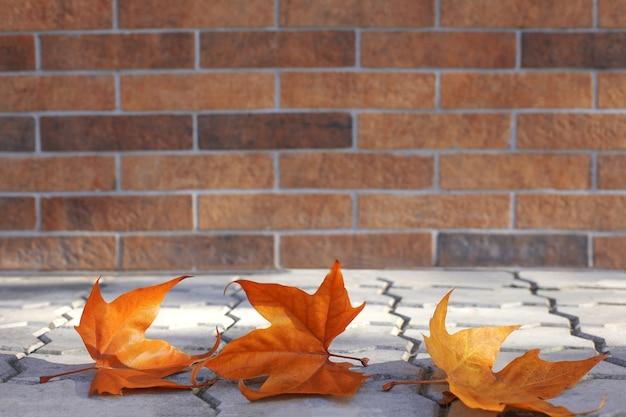レンガの壁の背景に地面にオレンジ色のカエデの葉。秋の葉の背景