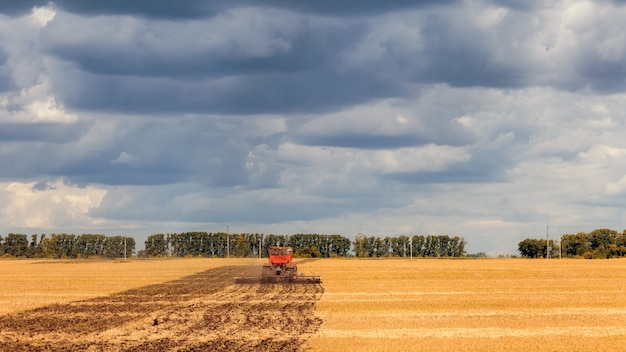 An orange modern tractor plows the earth in a golden field of wheat on a summer day, in the sky a cumulus cloud