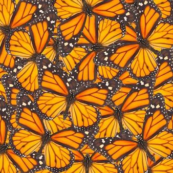 오렌지 바둑 나비는 자연 배경을 닫습니다