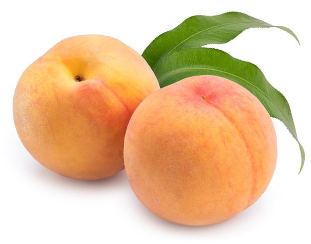 오렌지 복숭아 잎 격리 격리