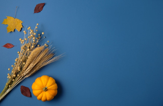 Оранжевая тыква и осенние клены на классическом синем.