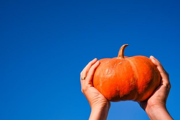 青空を背景に手でオレンジ色のカボチャ。