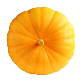 白い背景に分離されたオレンジ色のカボチャ。 1つの野菜、上面図。