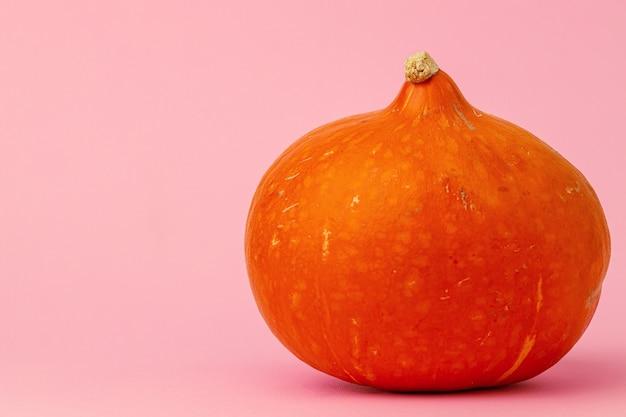 ピンクの背景にオレンジ色のカボチャを正面から見る