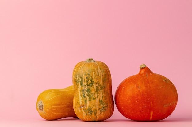 ピンクの背景にオレンジ色のカボチャ