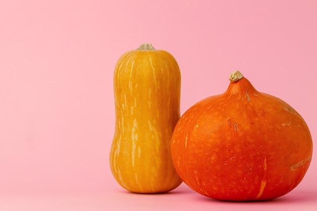 ピンクの正面図にオレンジ色のカボチャ