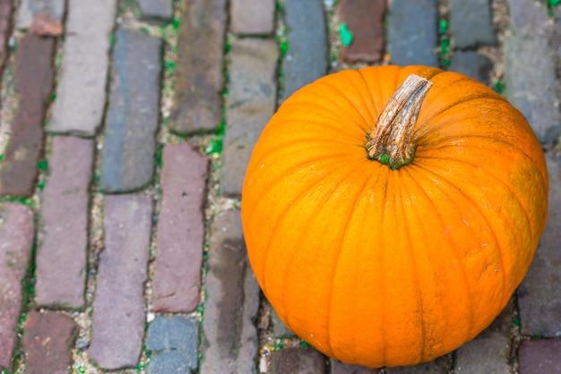 Orange pumpkin on a pavement.