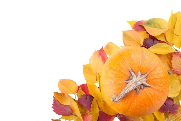 白い背景で隔離の葉とオレンジ色のカボチャ