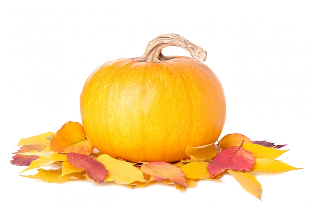 Orange pumpkin with leaves isolated on white background