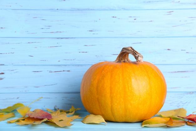 青色の背景に葉とオレンジ色のカボチャ。