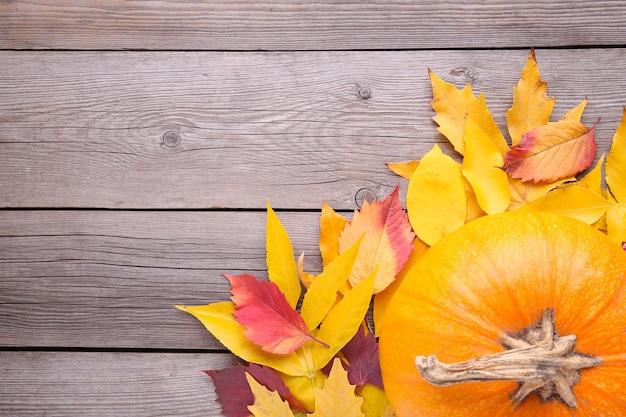 灰色の背景の葉とオレンジ色のカボチャ。