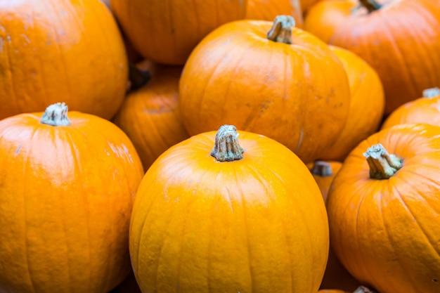 Orange pumpkins close up
