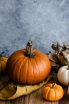 Orange pumpkins halloween jack o' lantern