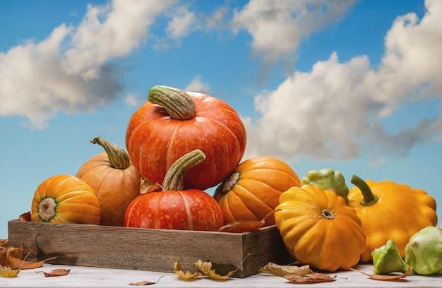 木製の箱と近くのカボチャのオレンジ色のカボチャ。 10月、雲と青い空。