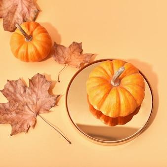Оранжевые тыквы на цветном фоне