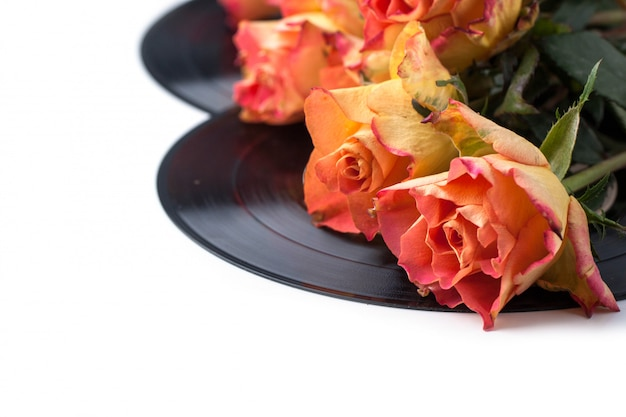 Orange roses with old records over white