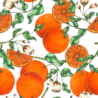 Orange seamless pattern hand pained in watercolor