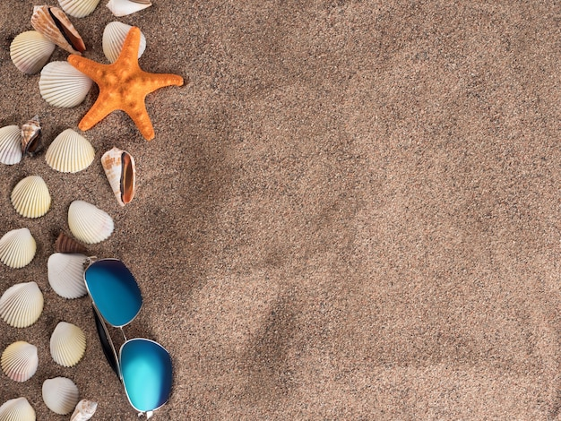 Orange starfish and seashells lie on the coarse sand, top view. copy space.