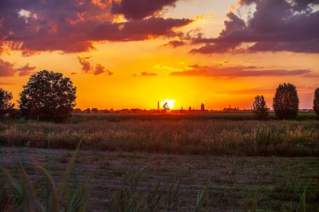 여름 시간에 시골 풍경 세부 사항에서 오렌지 일몰