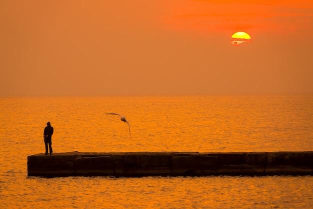 穏やかな海に沈むオレンジ色の夕日。桟橋に釣り竿を持った一人の漁師。波の上のカモメ