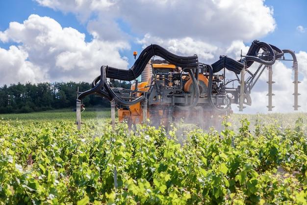 Оранжевый трактор возделывает поле, опрыскивая виноградник фунгицидом, разбрызгивая пестициды среди рядов виноградников
