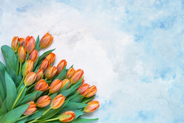 Orange tulips bouquet on blue watercolor background. copy space, top view