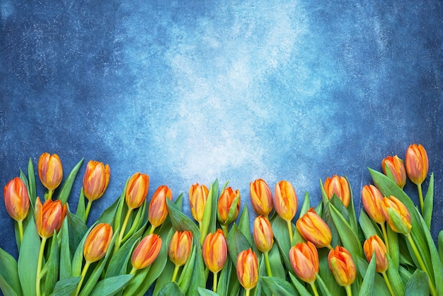Orange tulips bouquet on blue watercolor background. copy space, top view.