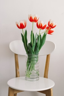Orange tulips on a white chair in the living room. spring and holidays.