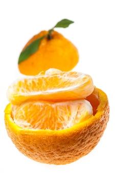 오렌지 제주도, 한국.
