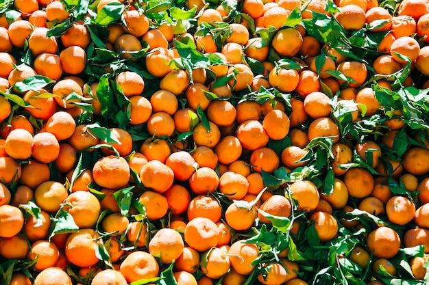 マラケシュの市場でオレンジ