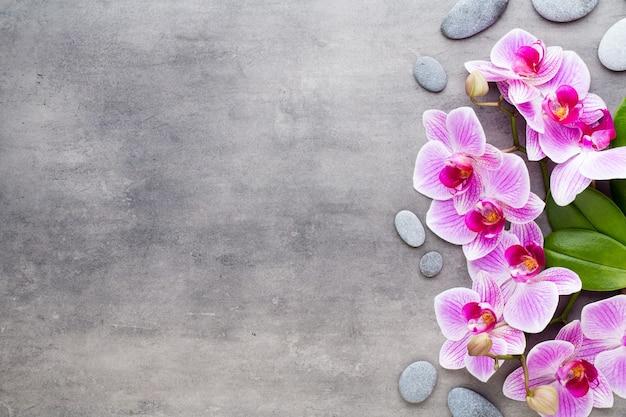 灰色のテーブルの上の蘭とスパの石