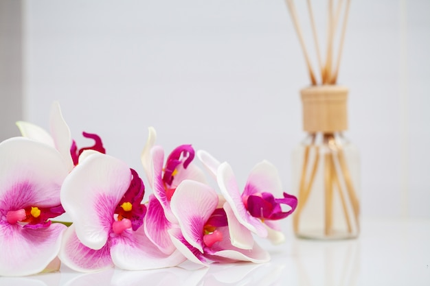 Orchid and aroma oil on white table
