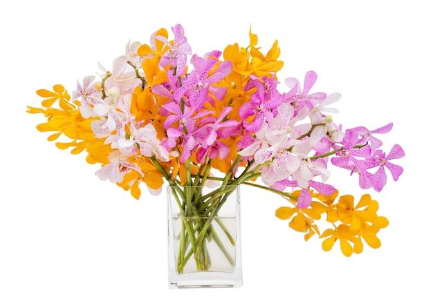 흰색 절연 꽃병에 난초 꽃다발