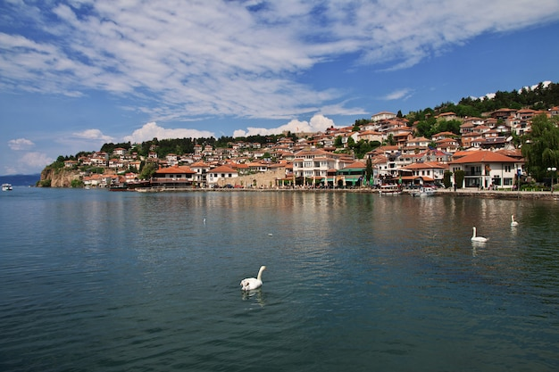 Orchid city in macedonia on the lake