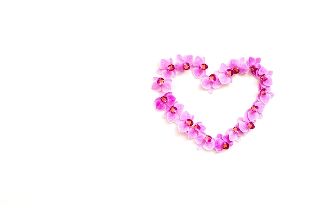 ハートの形をした白い背景の上の蘭の花。花は紫色です。テキストのための空のスペース。花の背景とテクスチャ。バレンタインデーと3月8日のコンセプト。