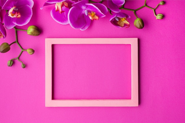 Orchid flowers with empty frame