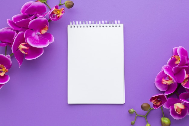 Orchid flowers with empty notepad mock-up