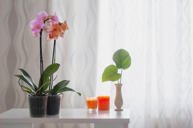 ウィンドウの背景のテーブルの上の蘭
