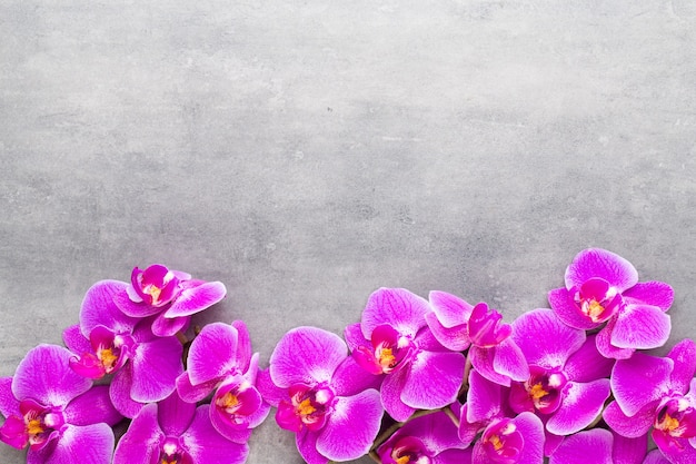 Orchid and spa stones on a stone spa and wellnes scene
